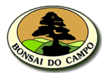 Bonsai do Campo